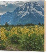 Wildflowers And Mount Moran Wood Print