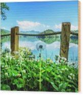 Wildflowers At The Lake In Spring Wood Print