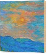 Wildflowers By A Blue Ridge Sunset Wood Print