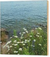 Wildflowers By The Lake  Wood Print