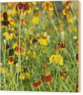 Wildflowers Four Wood Print