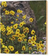 Wildflowers Honoring Mary Jabens Wood Print