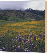 Wildflowers In Fog 2 Wood Print