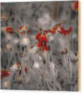 Wildflowers Of The Dunes Wood Print by DigiArt Diaries by Vicky B Fuller