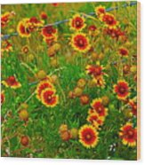 Wildflowers On The Barb Wood Print