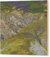 Wildflowers Up The Hills Of Temblor Range At Carrizo Plain National Monument Wood Print