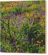 Wildflowerscape Wood Print