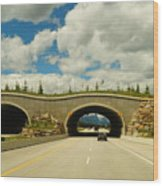 Wildlife Crossing Wood Print