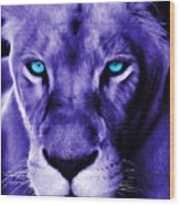 Wildlife Lion 12 Wood Print