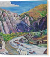 Wildlife On The Colorado River Wood Print