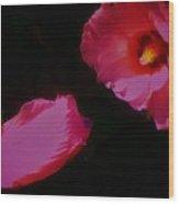 Wildly Pink On Black Flower Wood Print