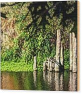 Willamette River Reflections 3783 Wood Print