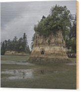 Willapa Bay Shoreline Wood Print