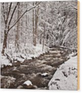 Willard Brook 2 Wood Print