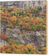 Willard Cliffs Wood Print
