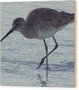 Willet In The Surf Wood Print