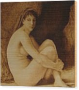 William Bouguereau Seated Nude  Wood Print