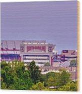 Williams - Bryce Stadium Wood Print