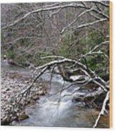 Williams River In Winter Wood Print