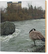 Willie Willey Rock - Riverfront Park - Spokane Wood Print
