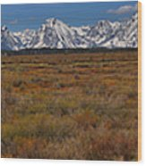 Willow Flats At Grand Teton Panorama Wood Print