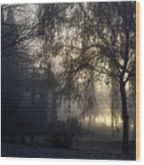 Willow In Fog Wood Print