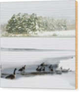 Willow Lake Geese Wood Print