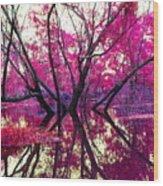 Willow Pink Wood Print