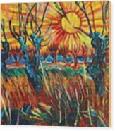 Willows At Sunset - Study Of Vincent Van Gogh Wood Print