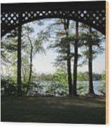 Wilson Pond Framed Wood Print