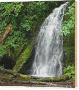 Wilson River Hwy Waterfall Wood Print