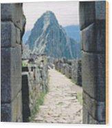 Winay Picchu Wood Print