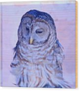 Wind Blown Owl  Wood Print