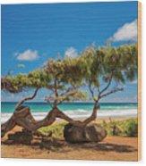 Wind Blown Tree Wood Print by Brian Harig