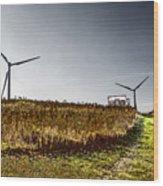 Wind Driven Wood Print