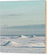 Wind Farm On Frozen Erie Wood Print