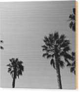 Wind In The Palms- By Linda Woods Wood Print