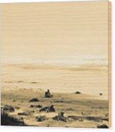 Wind Storm On The Beach Wood Print