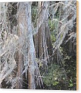 Wind Through The Cypress Trees Wood Print