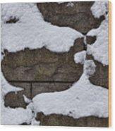 Windblown Snow Wood Print