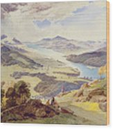Windermere From Ormot Head Wood Print