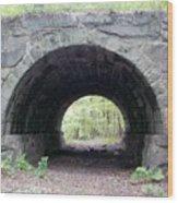 Windham Rail Trail Bridge Wood Print