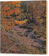 Winding Brook Wood Print