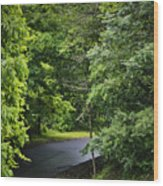 Winding Road Bluestone State Park West Virginia Wood Print