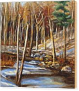 Winding Stream Wood Print