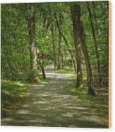Winding Trails At Bur Mil Park  Wood Print