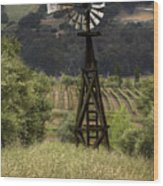 Windmill And Vineyards Wood Print