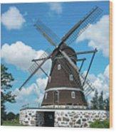 Windmill In Fleninge,sweden Wood Print