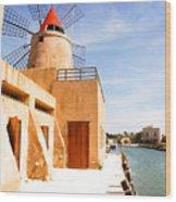 Windmill On Canal - Trapani Salt Flats Wood Print