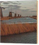 Windmills In The Evening Sun Wood Print